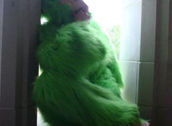 What could be more appropriate for Earth Day than a green gorilla costume?