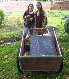 From Roots to Shoots: Supporting a Network of Campus Farmers