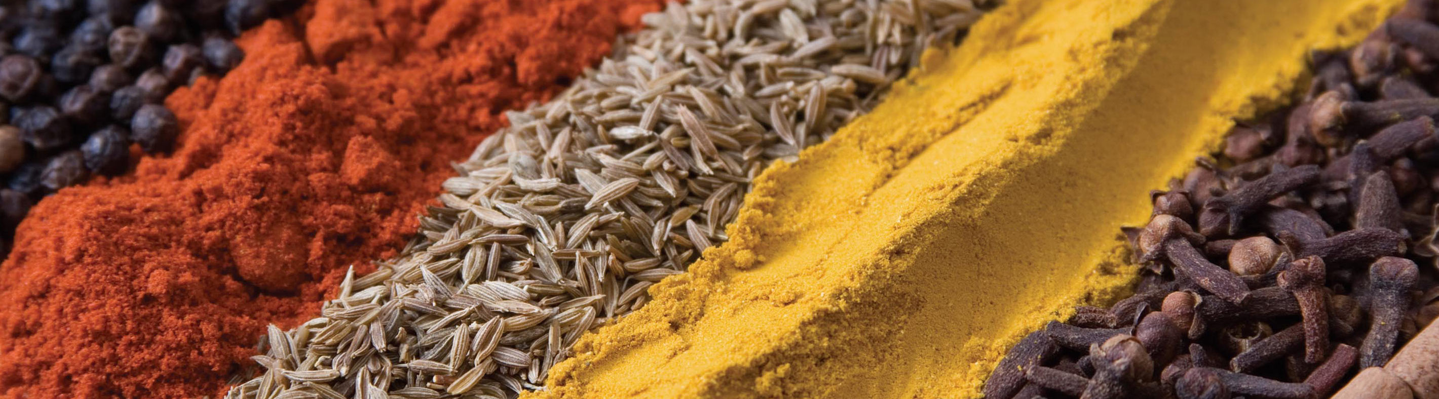 indianspices-is05535503_interstitial