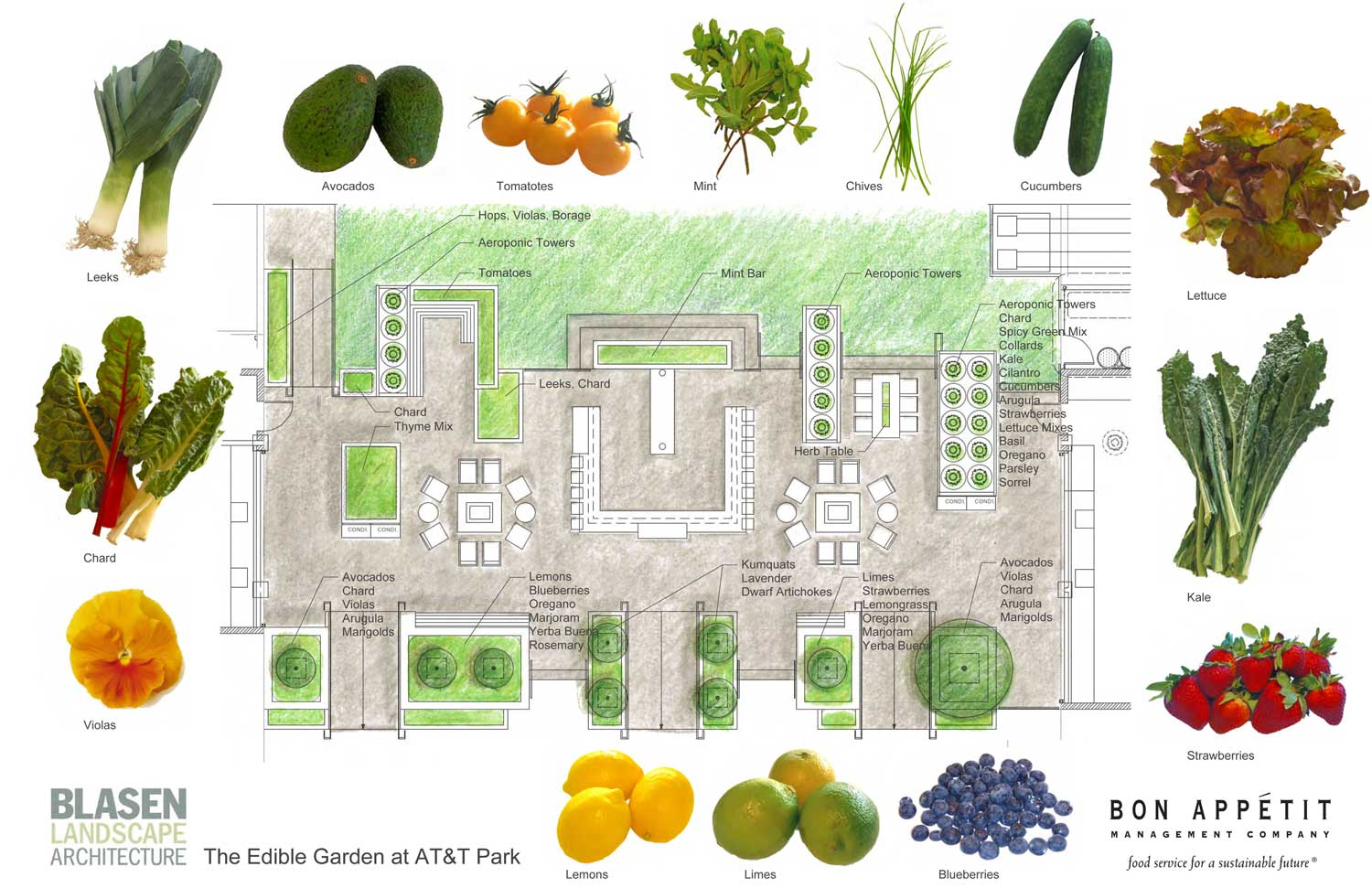 The Garden will offer bountiful summer fruits and vegetables. (Click picture to enlarge.)