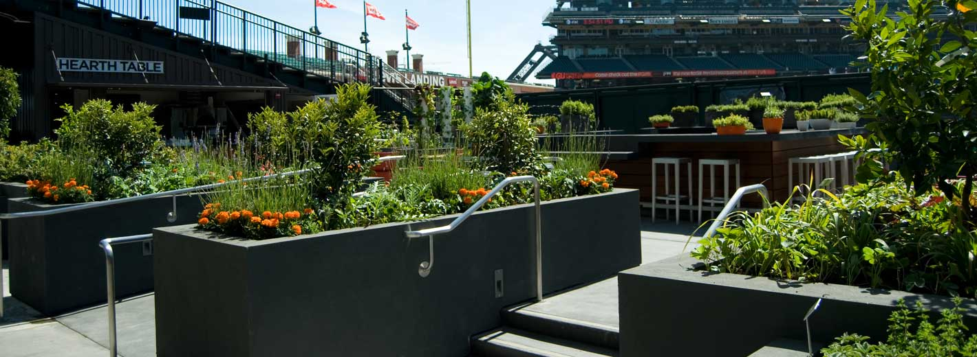 The Garden at AT&T Park