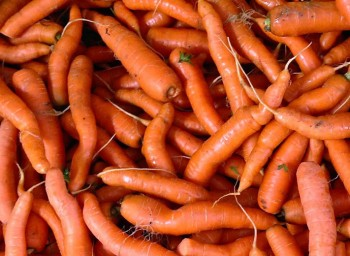 imperfect_carrots