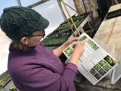 Polly points out the varieties of lettuce she wants to grow for Bon Appétit