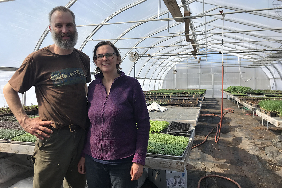 Villageside Farm owners Prentice Grassi and Polly Shyka in the greenhouse