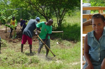Planting a sustainable future for Haiti: update #3 from David Lachance