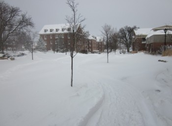 Wheaton Employees Brave Blizzard to Serve Students
