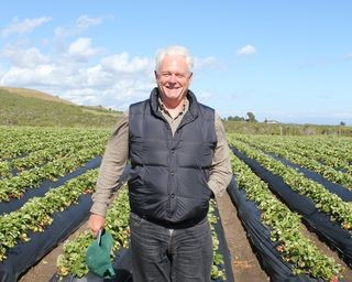 Advice for Young Farmers from Swanton Berry Owners