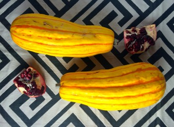 Recipe: Roasted Delicata Squash with Tahini