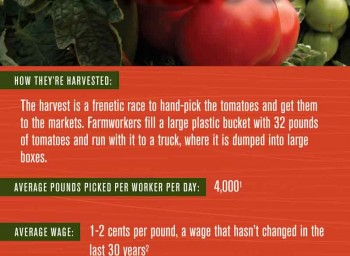Celebrating Farmworker Awareness Week Companywide, March 24-31