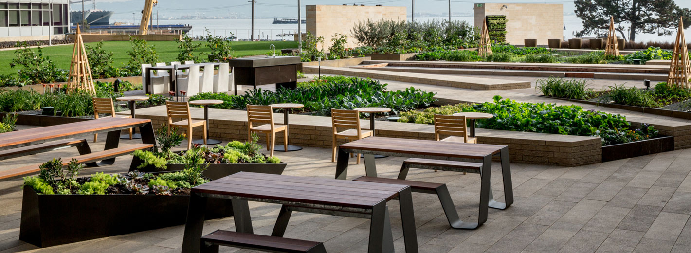 stem kitchen garden offers fresh take on farm to table dining in mission bay