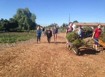 Huerta del Valle: Cultivating Equity for the Community, by the Community
