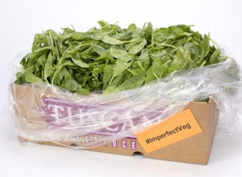 imperfectly delicious Second-Crop-Clip-Spinach-for-web_news clip only