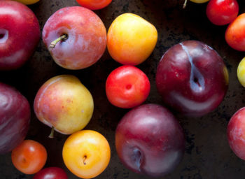 Fresh Plum Assortment