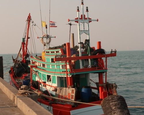 International Buyers Must Prevent Thailand Backtracking on International Convention on Work in Fishing