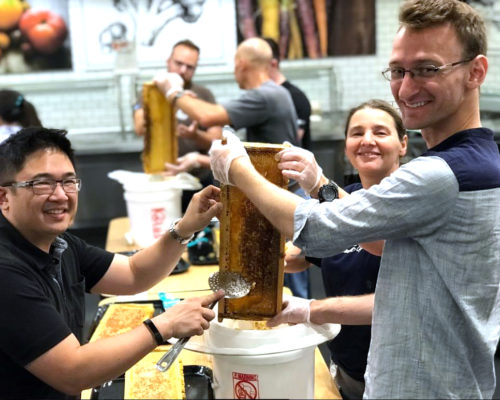 SAP Takes Guests on a Sweet Hive-to-Honey Journey