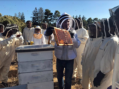 nstructors show guests how to open and investigate the hives