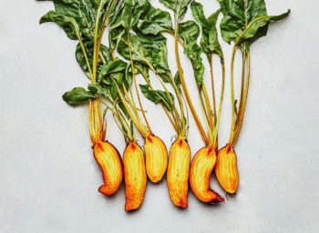 Row7_BadgerFlameBeets