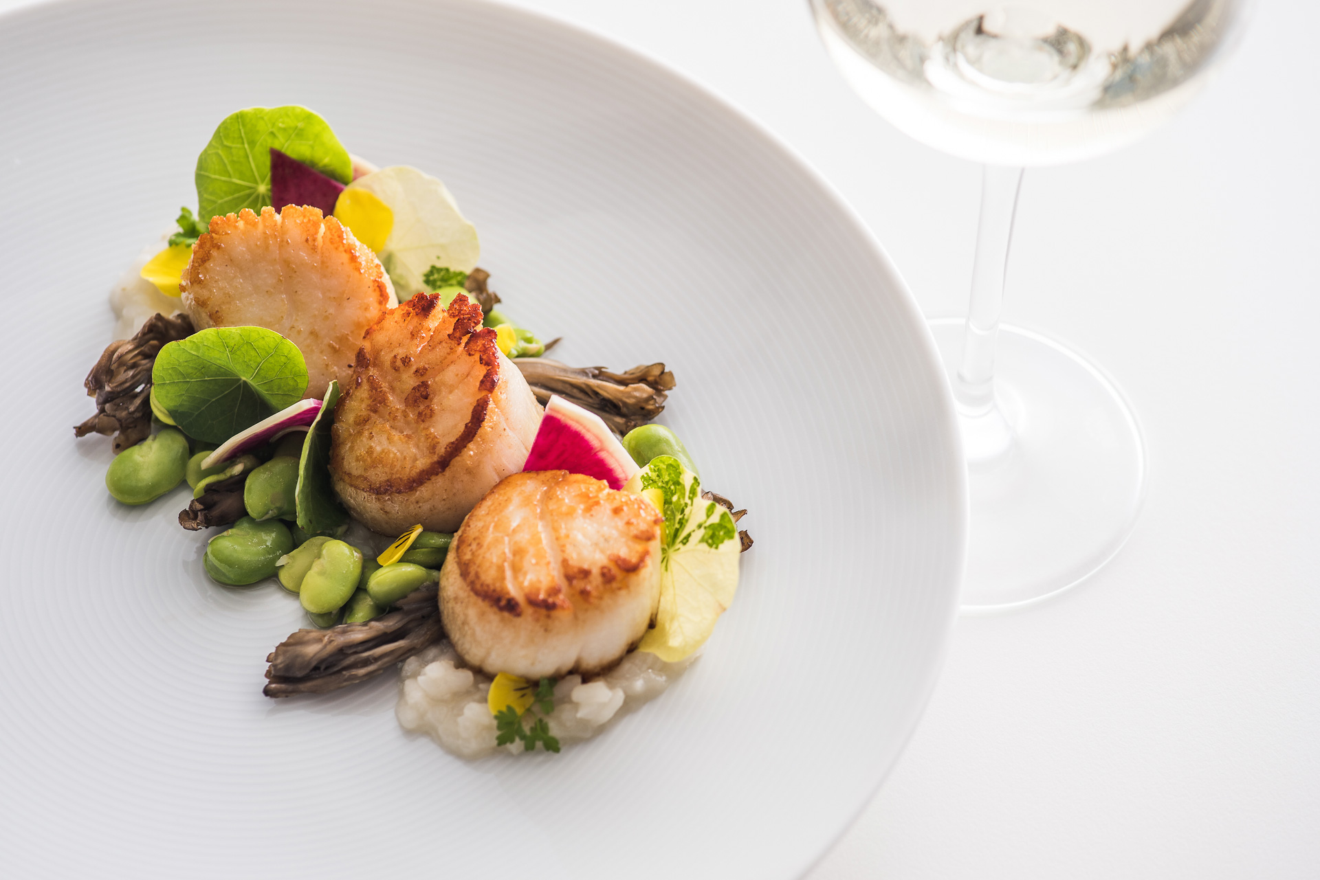Provenance scallop dish