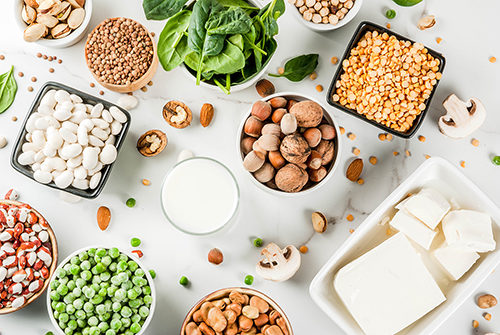 Protein Facts vs. Fallacy: Is More Protein Better?