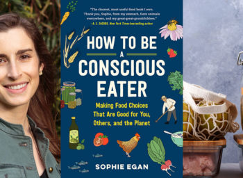 Let's Cook with Sophie Egan: 5 Easy Ways to Waste Less Food at Home