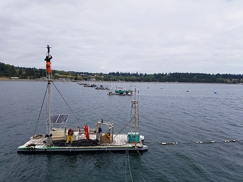 Rows of small raftlike boats with observation towers are commonly used for reefnet fishing